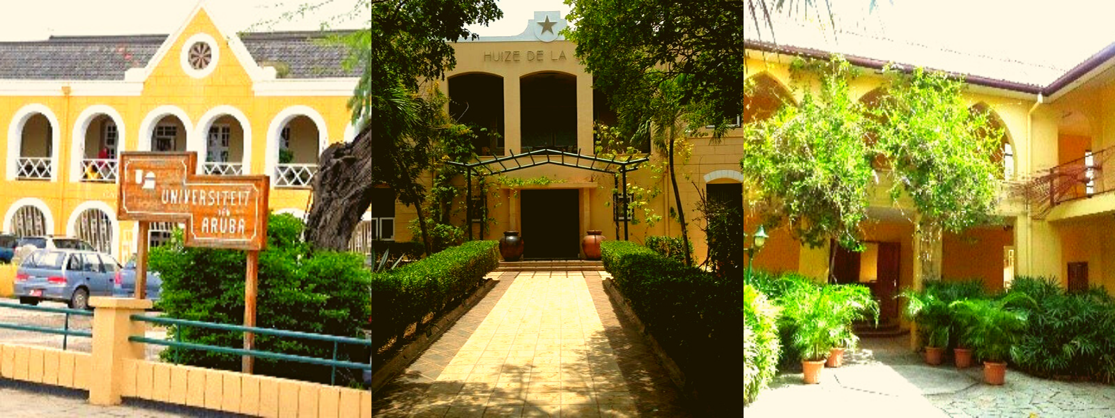 'Anders' Werken als Universitair Gastdocent Strafrecht op Aruba